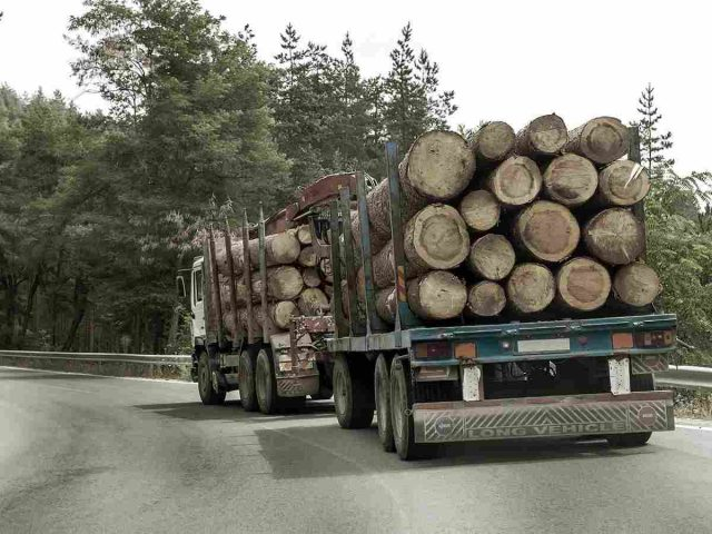 https://ciprologistics.com/wp-content/uploads/2017/08/inner_big_trucks_01-640x480.jpg